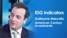 ESG Indicators